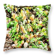 Carambola  Throw Pillow