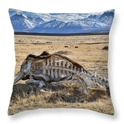Carcass With A View Throw Pillow