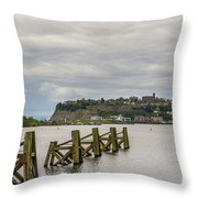 Cardiff Bay Dolphins Throw Pillow