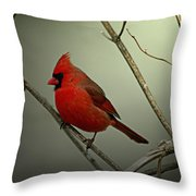 Cardinal And The Setting Sun Throw Pillow
