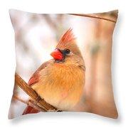 Cardinal Bird Female Throw Pillow by Peggy  Franz