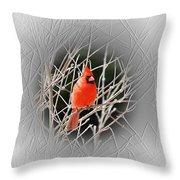Cardinal Centered Throw Pillow