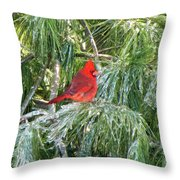 Cardinal On Ice Throw Pillow