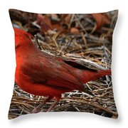 Cardinal On Pine Straw Throw Pillow