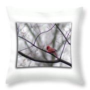 Cardinal Perched On A Branch Throw Pillow