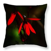 Cardinal  Plant Throw Pillow