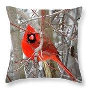 Cardinal Red Throw Pillow