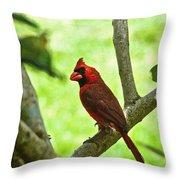 Cardinal Render Throw Pillow