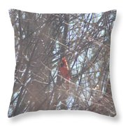 Cardinal Singing  Throw Pillow