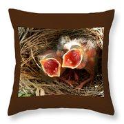 Cardinal Twins - Open Wide Throw Pillow