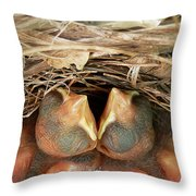 Cardinal Twins - Snugly Sleeping Throw Pillow by Al Powell Photography USA