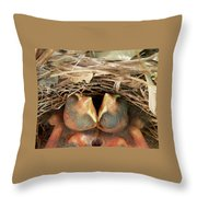 Cardinal Twins - Snugly Sleeping Throw Pillow