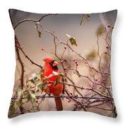 Cardinal With A Mouthful Of Hips Throw Pillow