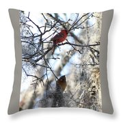 Cardinals In Mossy Tree Throw Pillow