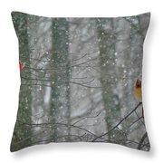Cardinals In Snow Throw Pillow