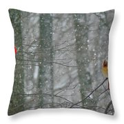 Cardinals In Snow Throw Pillow by Serina Wells