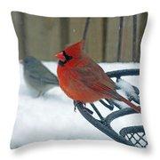 Cardinals Snow Day Throw Pillow