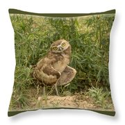 Care To Dance? Throw Pillow