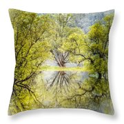 Caress In The Mist Throw Pillow