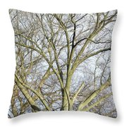 Caressing The Sky Throw Pillow