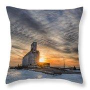 Cargill In The Sun Flare Throw Pillow