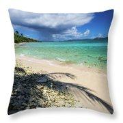 Caribbean Afternoon Throw Pillow