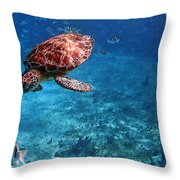 Caribbean Blue_13 Throw Pillow