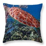 Caribbean Blue_7 Throw Pillow