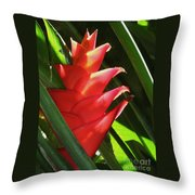 Caribbean Color Throw Pillow