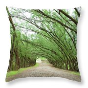 Caribbean Driveway Throw Pillow