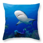 Caribbean Reef Shark Throw Pillow by Dave Fleetham - Printscapes