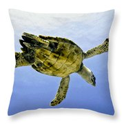 Caribbean Sea Turtle Throw Pillow