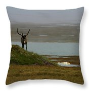 Caribou Fog Throw Pillow
