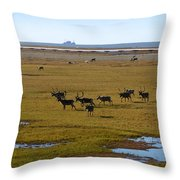Caribou Herd Throw Pillow