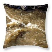 Caribou Stream Rapids Throw Pillow