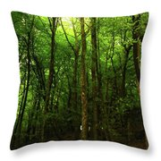 Carins Hill Co Sligo Ireland Throw Pillow