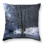 Carleton Place On The Mississippi - 125 Throw Pillow
