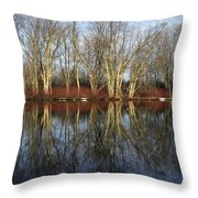 Carleton Place On The Mississippi - 38 Throw Pillow