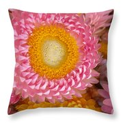Carmel Flower Throw Pillow