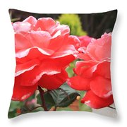 Carmel Mission Roses Throw Pillow