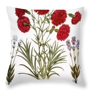 Carnation & Lavender, 1613 Throw Pillow