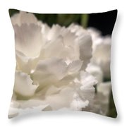 Carnation Blooms Throw Pillow
