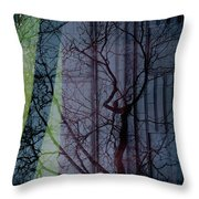 Carnegiewindowreflect Throw Pillow