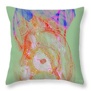 Carnival Abstract 6 Throw Pillow