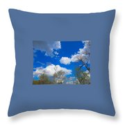 Carolina Blue Sky After The Rain Throw Pillow