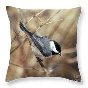Carolina Chickadee - Birds At Bisset Park Throw Pillow