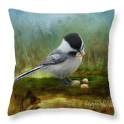 Carolina Chickadee Feeding Throw Pillow