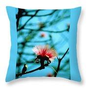 Carolina Flower And Bird Throw Pillow