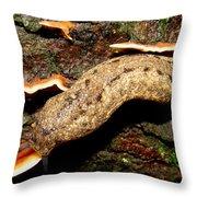 Carolina Mantle Slug Throw Pillow