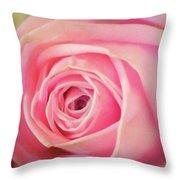 Carolina Rose Throw Pillow